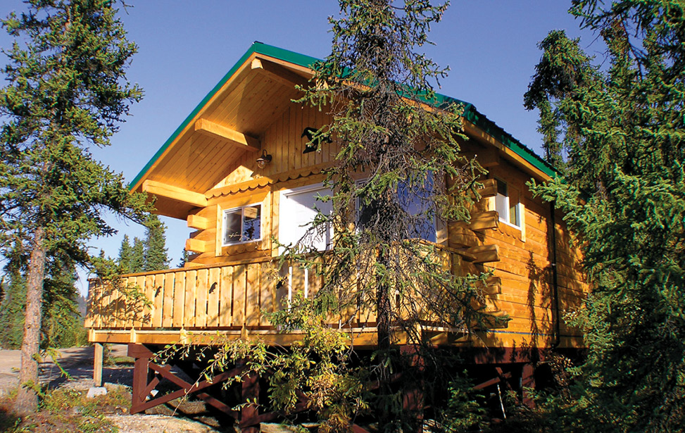 Denali National Park Resort Lodging In Alaska Denali